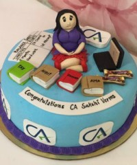 Accountant Theme Cakes