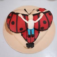 Boobs and Bra Theme Cakes